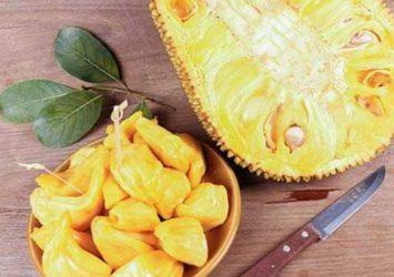 Jackfruit Seeds To Strengthen Your Immune System